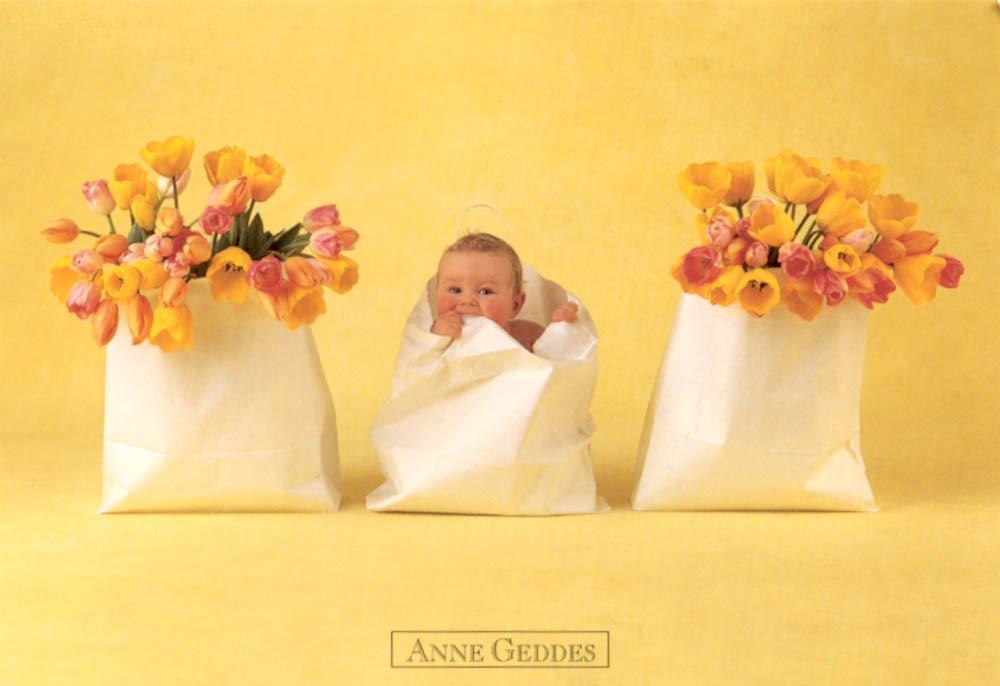 Anne Geddes - Lies118