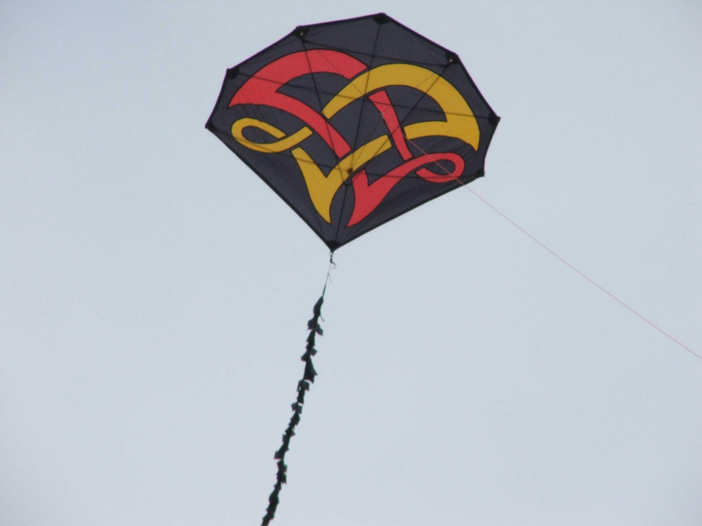 cool kite designs wwwmiifotoscom