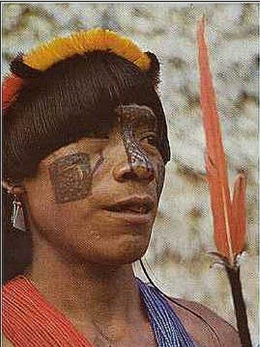 spreekbeurt indianen