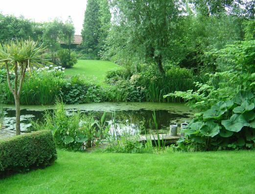 De tuin for Tuin en vijver